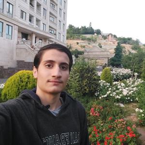 saeedzamani121351