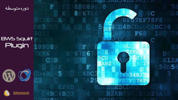 آموزش  افزایش امنیت در وردپرس با پلاگین BWS