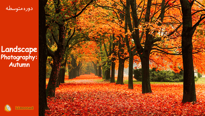 دوره آموزش عکاسی از منظره در پاییز - دوبله از لیندا